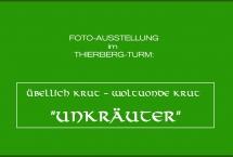 FOTOAUSSTELLUNG IM THIERBERG-TURM Übellich Krut - Woltuonde Krut
