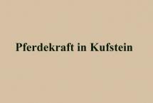 PFERDEKRAFT IN KUFSTEIN (Bilder des Monats-August 2017)